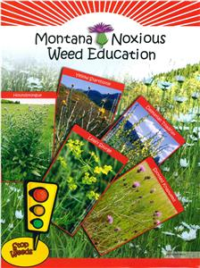 4-H Montana Noxious Weed Education Folder 5343