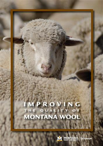 Improving the Quality of Montana Wool DVD007