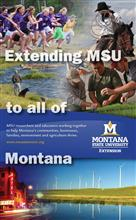 12x20 Roll-Up - Extending MSU to all of Montana DSP024