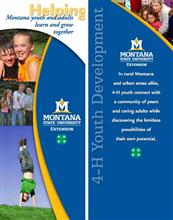32x72 Roll-Up - 4-H Youth Development DSP028