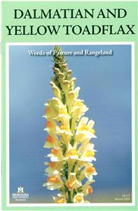 Dalmatian and Yellow Toadflax Weeds of Pasture and Rangeland EB0115