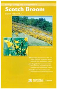 Biology, Ecology and Management of Scotch Broom EB0202