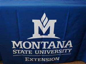 Extension Tablecloth AD0079