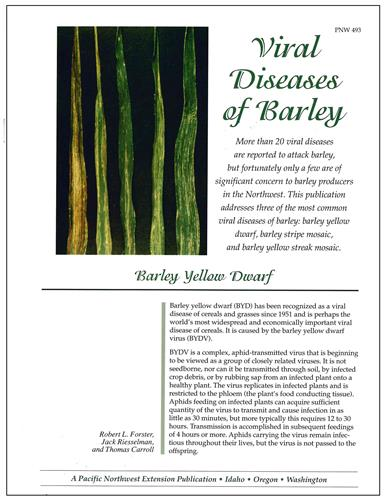 Viral Diseases of Barley PNW493