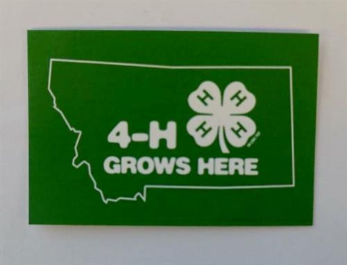 4-H Grows Here Stickers (pkg of 6) 4H0006