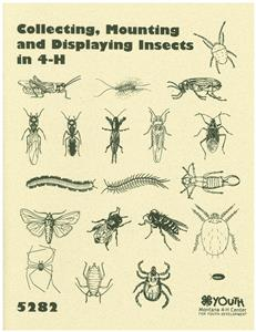 4-H Collecting, Mounting and Displaying Insects in 4-H 5282