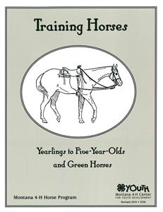 4-H Training Horses Yearlings to Five-Year-Olds 5336