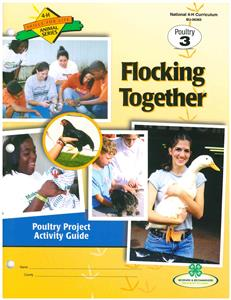 4-H Flocking Together - Poultry 3 BU6365