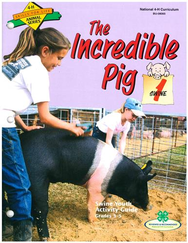 4-H The Incredible Pig - Swine 1 BU8065