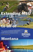 24x40 Roll-Up - Extending MSU to all of Montana DSP022