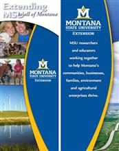 32x72 Roll-Up - Extending MSU to all of Montana DSP032