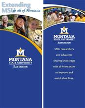 32x72 Roll-Up - Extending MSU to all of Montana DSP0