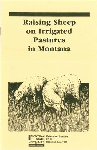 Raising Sheep on Irrigated Pastures in Montana EB0029