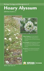 Biology, Ecology and Management of Hoary Alyssum (<i>Berteroa incana L.</i>) EB0194