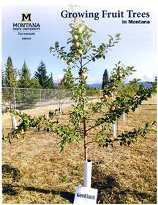 Growing Fruit Trees in Montana EB0222