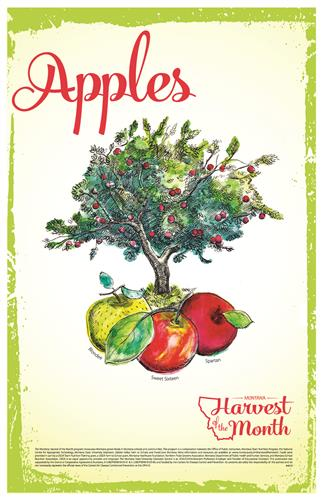 Harvest of the Month: Apples Poster  4619