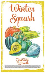 Harvest of the Month: Winter Squash Poster  4620