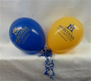 MSU Extension Pair of Blue and Gold Balloons AD0101