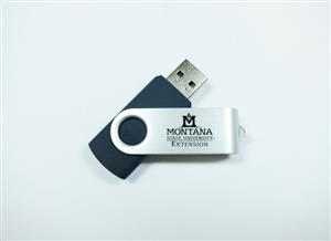 2GB Extension Flash Drive AD0145