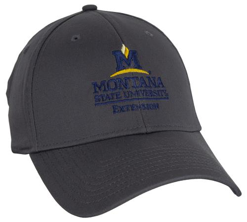 Extension Graphite Stretch Fit Cap AD0197