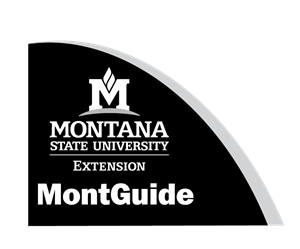Estate Planning in Montana: Getting Started MT199508HR