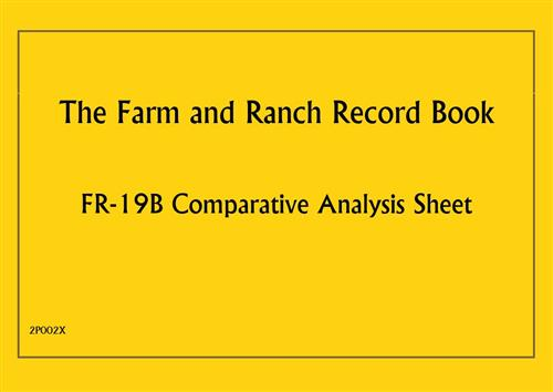 (F/R RB) Comparative Analysis Sheet 2P002X
